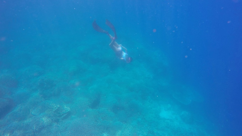 iris-freediver
